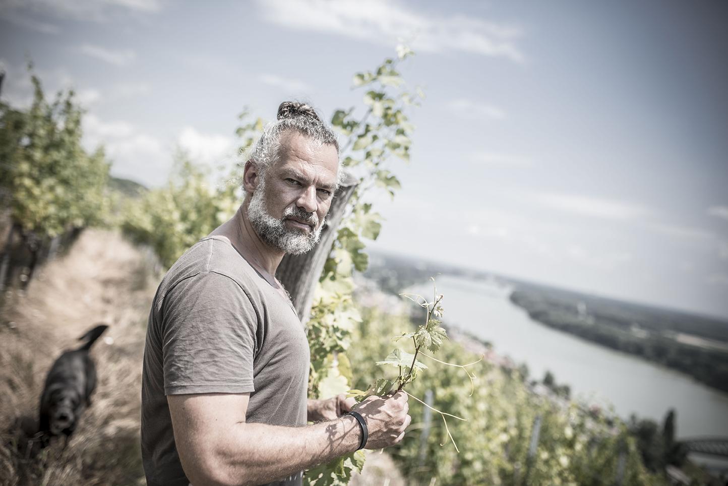 Weinmanufaktur Clemens Strobl